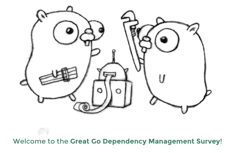 Go Dependency Management Survey Cover